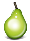 Piriform Pear